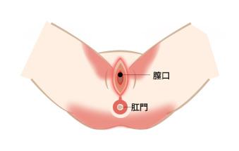 精 器 でき もの 女性 写真
